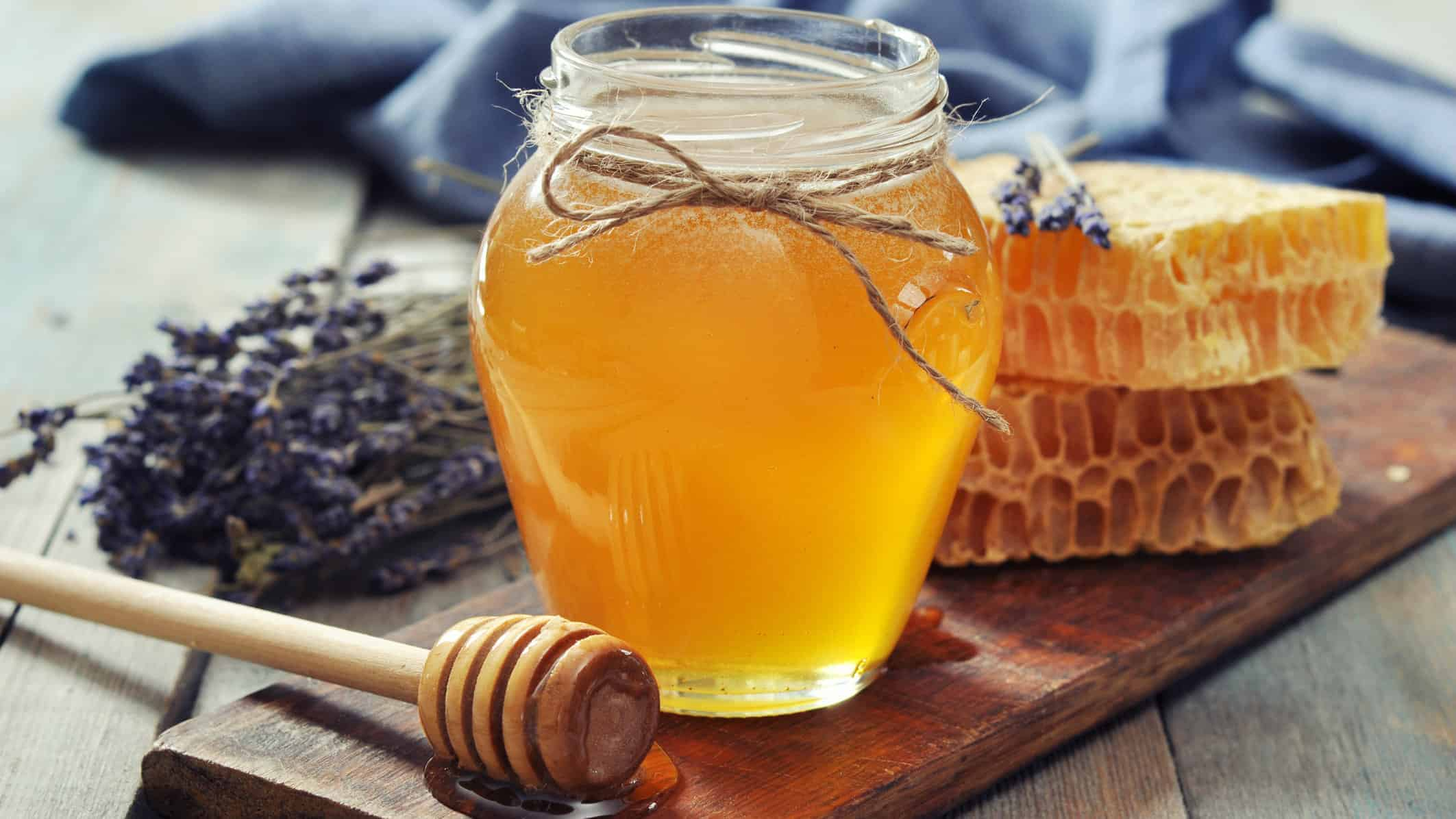 Honey in Jar 16.9